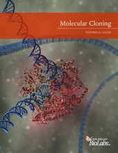 gene cloning protocol